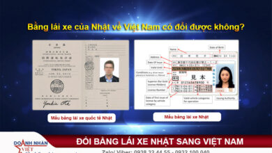 Bằng lái xe của Nhật về Việt Nam có đổi được không