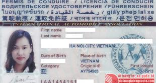 Đổi bằng lái xe quốc tế IAA Mỹ