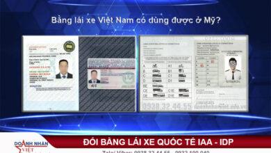 Bằng lái xe Việt Nam có dùng được ở Mỹ