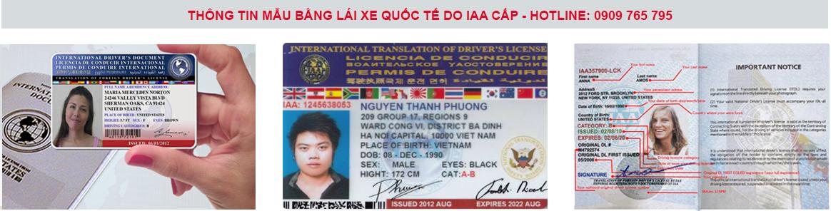 Mẫu bằng lái xe nước ngoài sau khi chuyển đổi do IAA (Mỹ) cấp