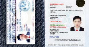 Mặt thông tin bằng lái xe quốc tế IAA Mỹ